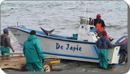 Fishermen at Buffelsjags