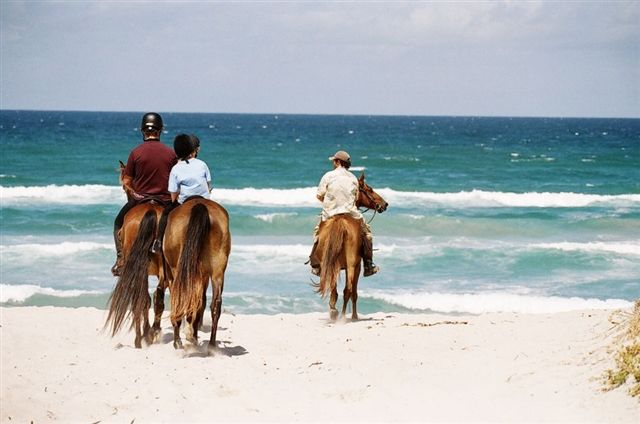 Horse riding on the beach in Walker Bay